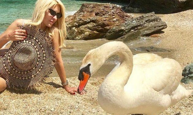 Ελένη Μενεγάκη  Πιο σέξι από ποτέ σε παραλία της Άνδρου με απρόσμενη παρέα 56d2a679f88