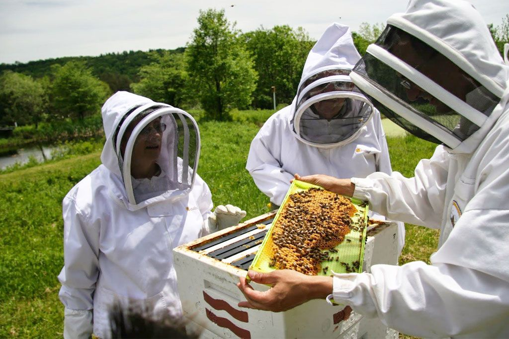 μελισσοκόμων