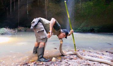 Θεοπάλαβος τύπος φιλάει βασιλική κόμπρα στο στόμα ! | ΒΙΝΤΕΟ