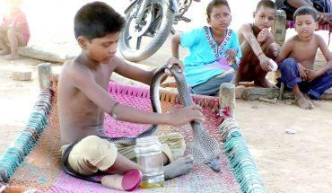 9χρονος ζει, τρώει και κοιμάται μαζί με δηλητηριώδη φίδια! | ΒΙΝΤΕΟ