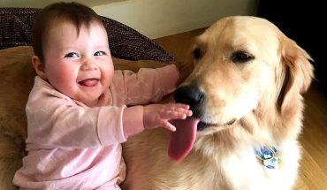 Μωράκι ΤΡΕΛΑΙΝΕΤΑΙ στα γέλια με αυτά που κάνει ο σκύλος του! | ΒΙΝΤΕΟ