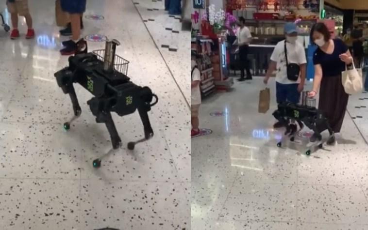 Ρομπότ σε σχήμα σκύλου βάζει αντισηπτικό σε πελάτες πολυκαταστήματος! | ΒΙΝΤΕΟ