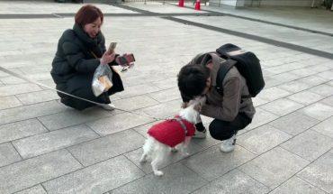 Συγκίνηση: Σκύλος βρίσκει μετά από 1 χρόνο το αφεντικό του! | ΒΙΝΤΕΟ