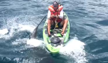 Εξαγριωμένος καρχαρίας «ΒΥΘΙΖΕΙ» κανόε-καγιάκ   ΒΙΝΤΕΟ