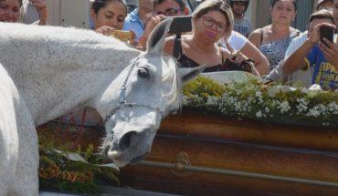 Συγκίνηση: Άλογο σπαράζει στην κηδεία του αφεντικού του! | ΒΙΝΤΕΟ