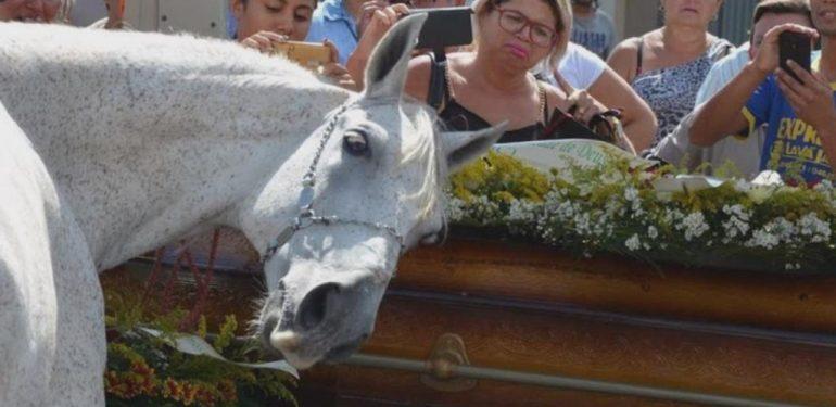 Συγκίνηση: Άλογο σπαράζει στην κηδεία του αφεντικού του!   ΒΙΝΤΕΟ