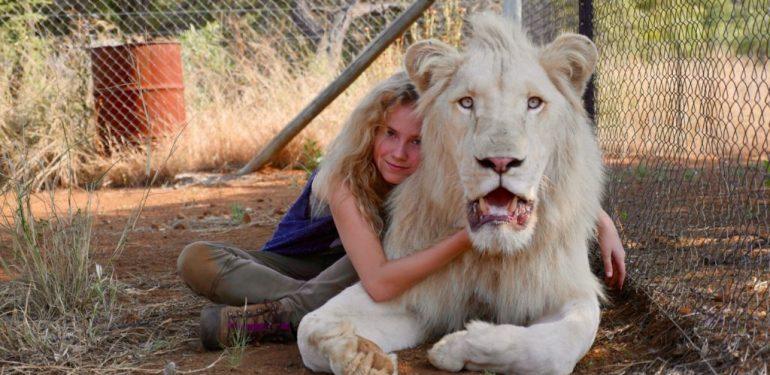 Υπάρχουν λευκά λιοντάρια; ΝΑΙ, υπάρχουν! | ΒΙΝΤΕΟ