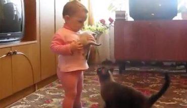 Γάτα «ελευθερώνει» γατάκι από την αγκαλιά μωρού, το μωρό μπήγει τα κλάματα! | ΒΙΝΤΕΟ