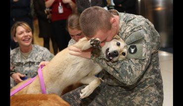 Συγκίνηση: Σκύλος υποδέχεται φαντάρο που γυρνάει από τον πόλεμο! | ΒΙΝΤΕΟ