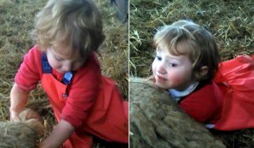 Απίστευτο: Γενναίο κοριτσάκι ξεγεννάει προβατίνα! | ΒΙΝΤΕΟ