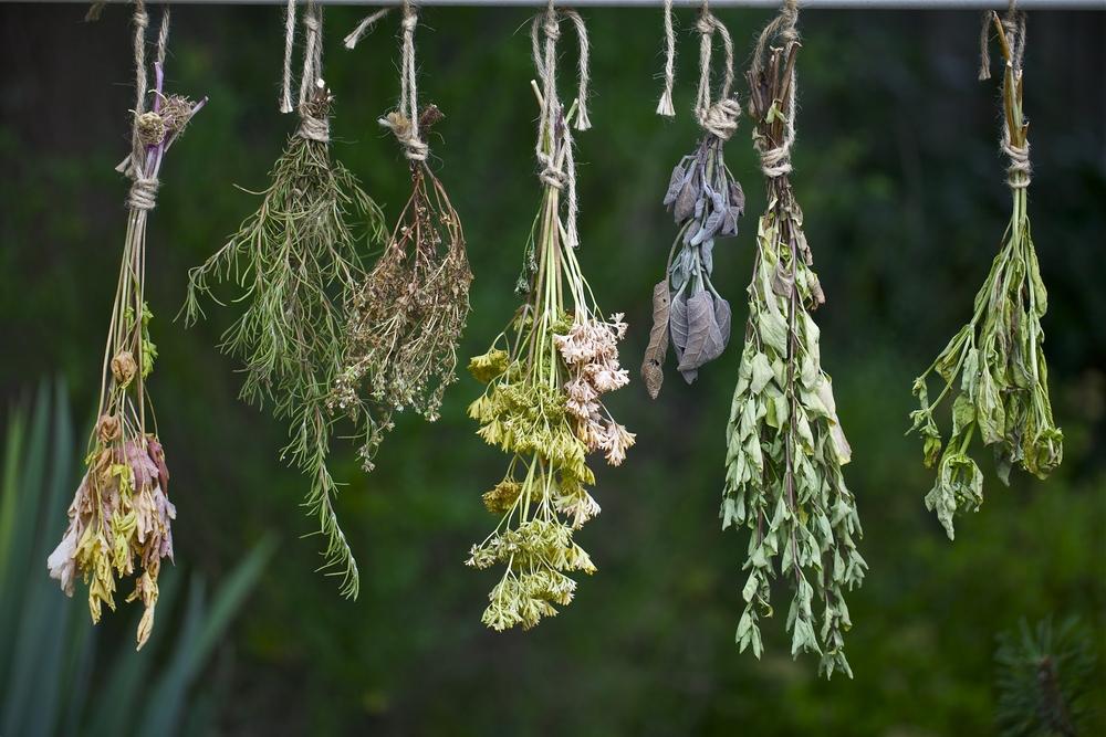 Κρητικά βότανα κορονοϊός
