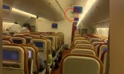 Αεροπλάνο νυχτερίδα