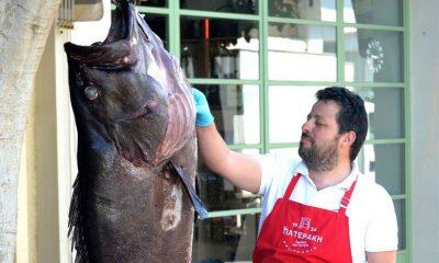 κισαμος ψαρια