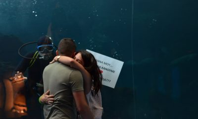 Συγκινητική πρόταση γάμου για νεαρό ζευγάρι στο Ενυδρείο κρήτης